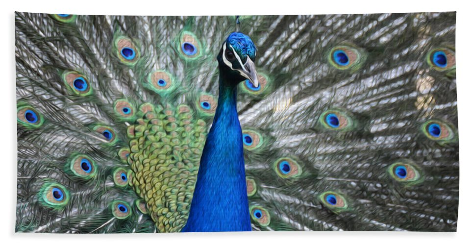 Peacock Hand Towel featuring the photograph Peacock Up Close by Tracy Winter