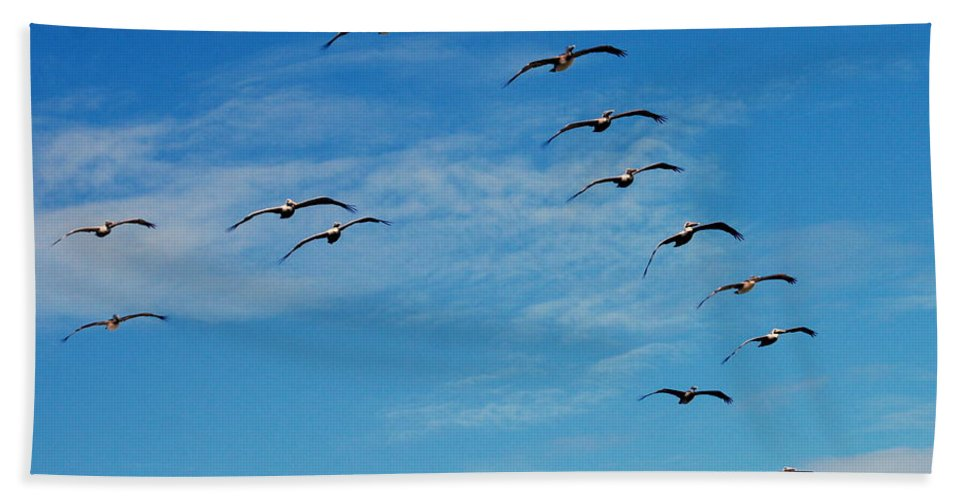 Pelican Bath Sheet featuring the photograph Pelican 001 by Larry Ward