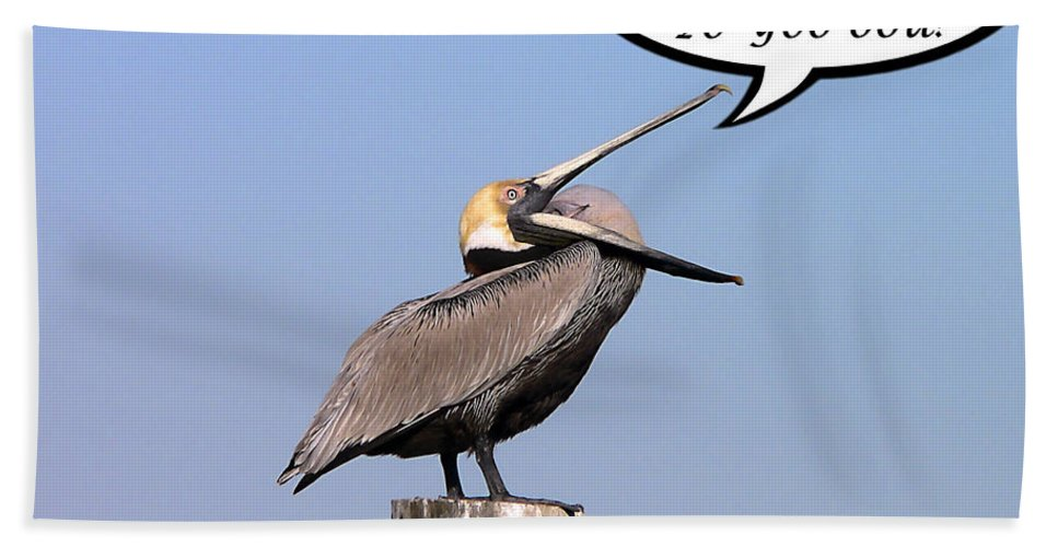 Anniversary Bath Sheet featuring the photograph Pelican Anniversary Card by Al Powell Photography USA