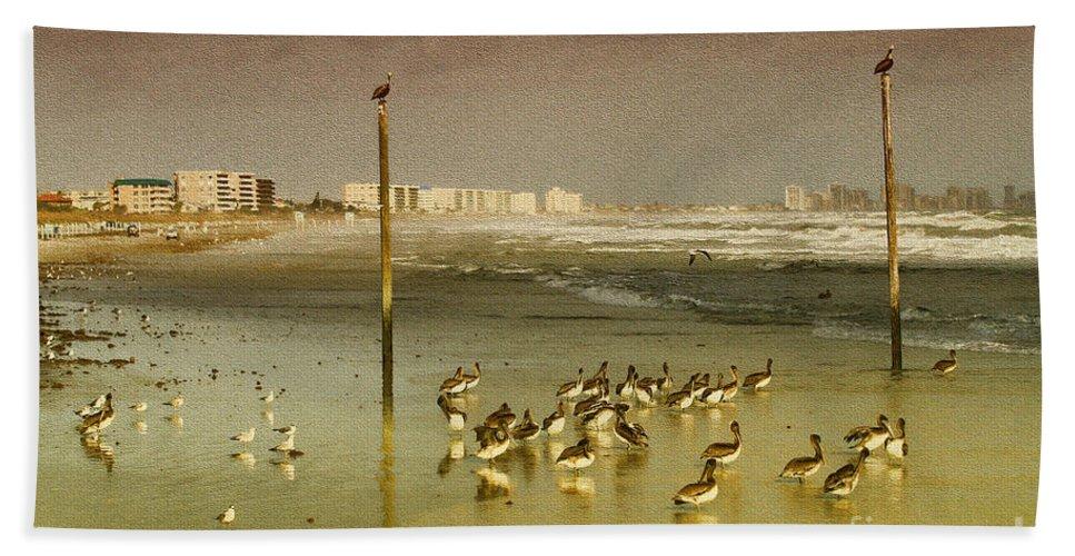 Pelicans Hand Towel featuring the photograph Pelican Haven by Deborah Benoit