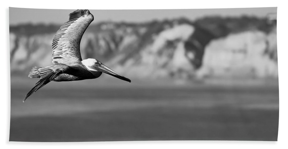 Dusk Hand Towel featuring the photograph Pelican In Black And White by Sebastian Musial