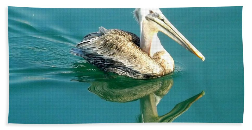 Pelican Bath Sheet featuring the photograph Pelican In San Francisco Bay by Clare Bevan