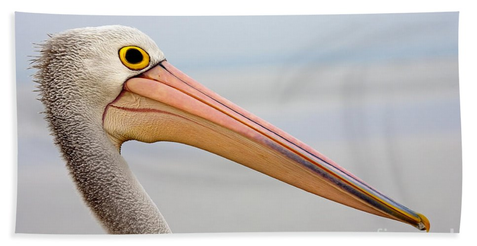Pelican Bath Sheet featuring the photograph Pelican Profile by Mike Dawson