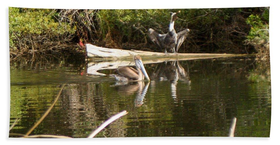 Pelican Hand Towel featuring the photograph Pelican Temper by Mechala Matthews
