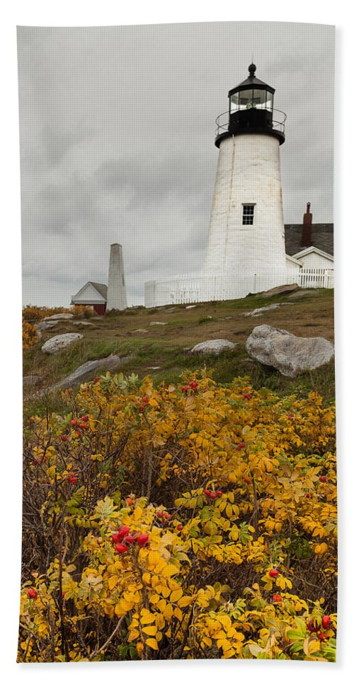 Vacationland Hand Towel featuring the photograph Pemaquid Point Lighthouse And Sea Roses by David Smith