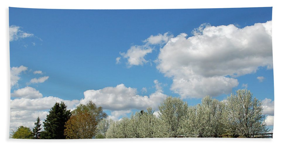 Spring Hand Towel featuring the photograph Perfect Day by Aimee L Maher ALM GALLERY