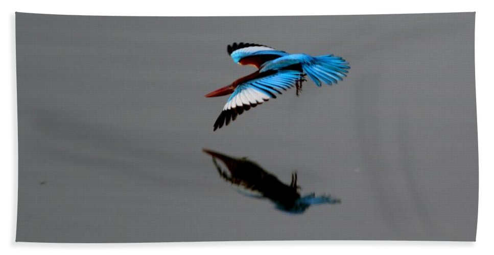 Dive Hand Towel featuring the photograph Perfect Dive by Ramabhadran Thirupattur