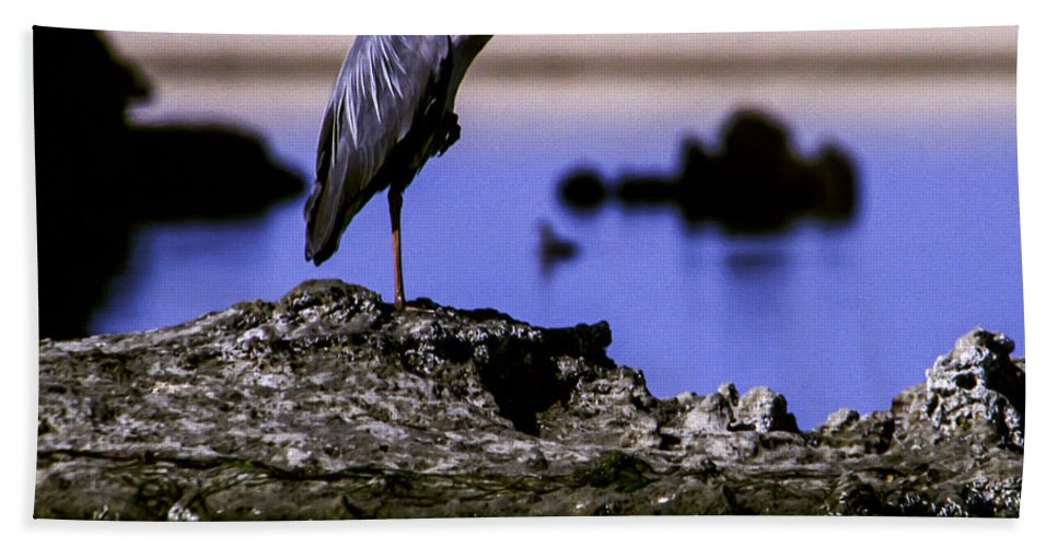 Africa Bath Sheet featuring the photograph Perfectly Still by Alistair Lyne