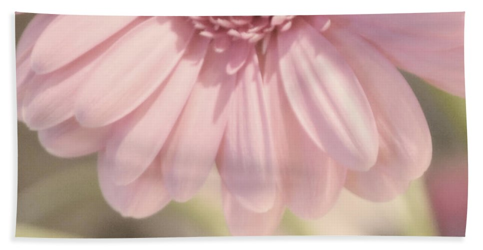 Pink Hand Towel featuring the photograph Personally Pink by Traci Cottingham