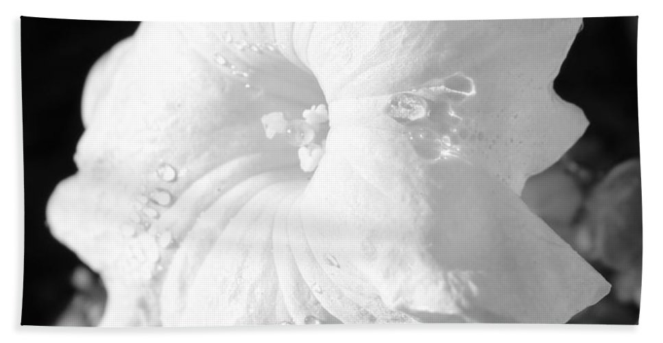 Floral Hand Towel featuring the photograph Petunia After Rain by Kume Bryant