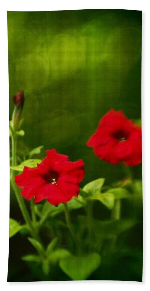 Flowers Bath Sheet featuring the photograph Petunia Dreams In The Woods by Dorothy Lee