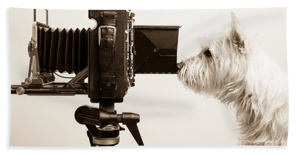 Westie Bath Towel featuring the photograph Pho Dog Grapher by Edward Fielding