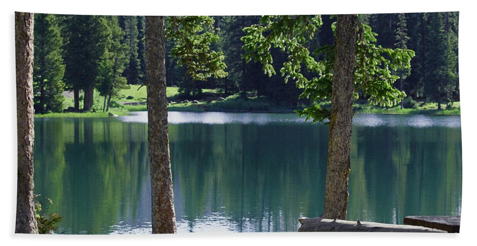 Lakes Hand Towel featuring the digital art Picnic By The Lake by Ernie Echols