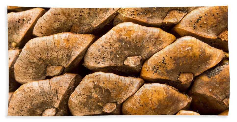 Pine Cone Hand Towel featuring the photograph Pine Cone by Scott Carruthers