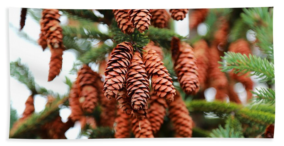 Pine Cones Hand Towel featuring the photograph Pine Cones by Scott Hill