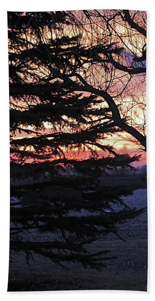 Sunset Hand Towel featuring the photograph Piney Sunset by Wayne Williams