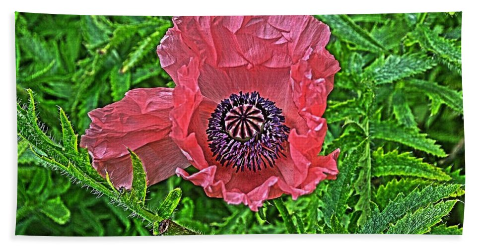 Flower Bath Sheet featuring the photograph Pink And Purple by Cathy Mahnke