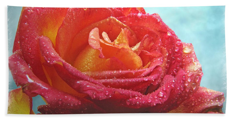 Dew Hand Towel featuring the photograph Pink And Yellow Rose With Dew II by Debbie Portwood