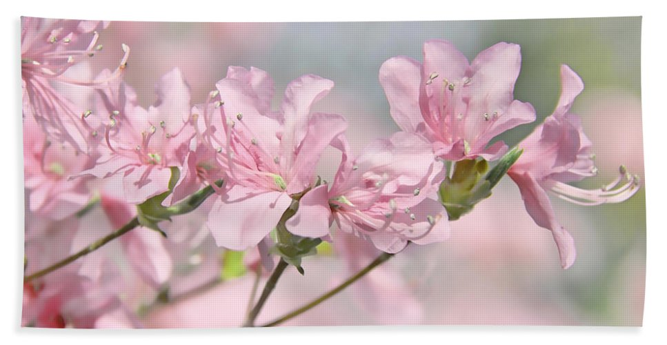 Azalea Hand Towel featuring the photograph Pink Azalea Flowers In The Spring by Jennie Marie Schell
