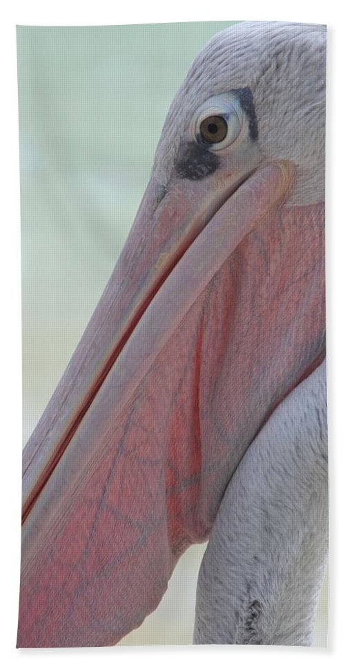 Animal Hand Towel featuring the photograph Pink Backed Pelican by Davandra Cribbie