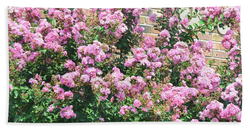 Landscape Hand Towel featuring the photograph Pink Bush by Kim Stafford