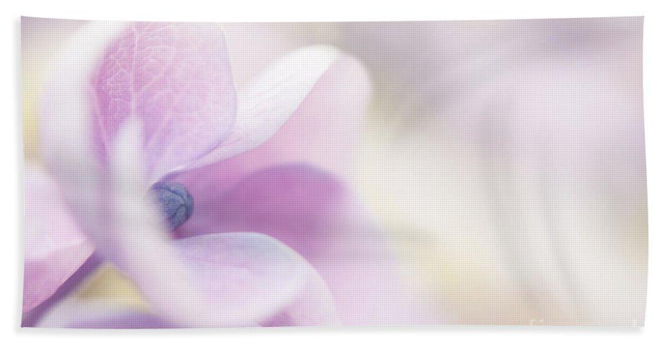 Garden Bath Sheet featuring the photograph Pink Cloud by Anne Gilbert
