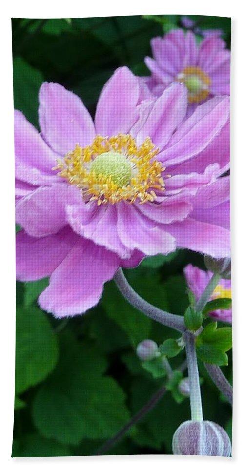 Flower Bath Sheet featuring the photograph Pink Dancer by Susan Garren