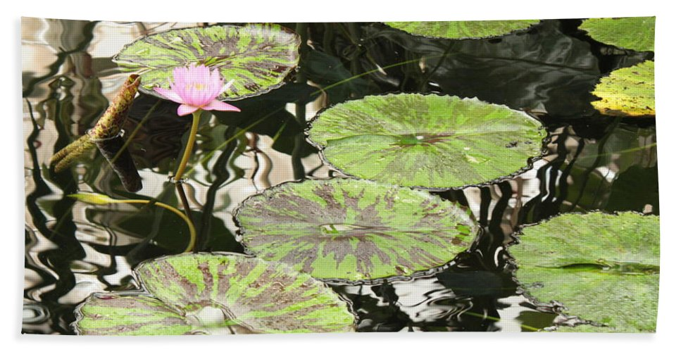 Pond Bath Towel featuring the photograph One Pink Water Lily With Lily Pads by Carol Groenen