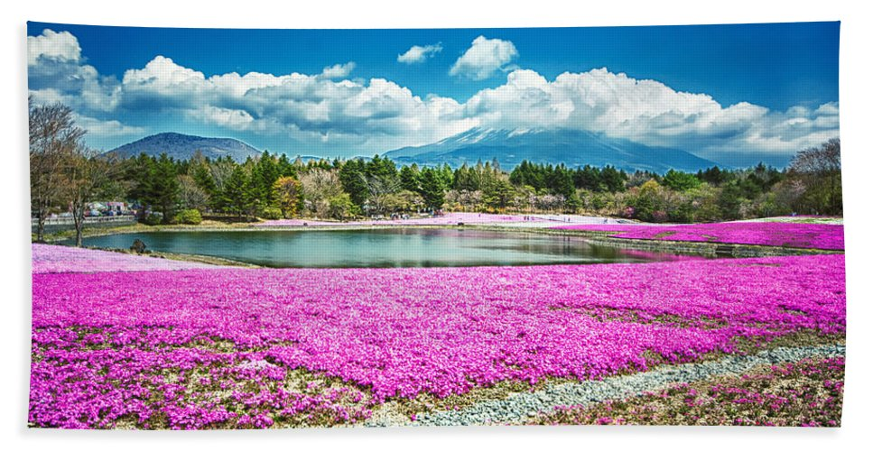 Fuji Hand Towel featuring the photograph Pink Flowers Blue Sky by Jonah Anderson