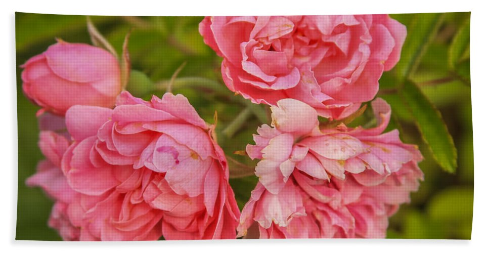 Flower Bath Sheet featuring the photograph Pink Peonies by Jane Luxton