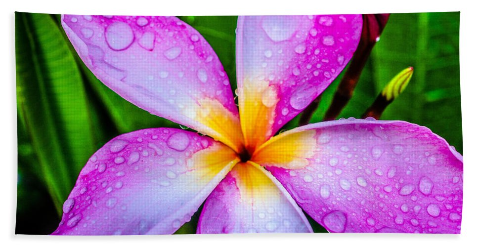 Pink Plumeria Hand Towel featuring the photograph Pink Plumeria by TK Goforth