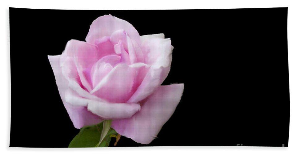 Pink Rose On Black Bath Sheet featuring the digital art Pink Rose On Black by Victoria Harrington