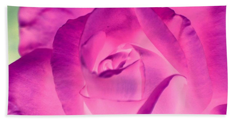 Rose Hand Towel featuring the photograph Pink Rose - Photopower 1790 by Pamela Critchlow