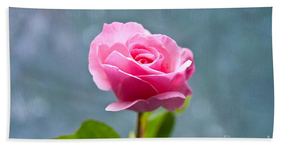 Pink Rose Hand Towel featuring the photograph Pink Rose by Steven Dunn