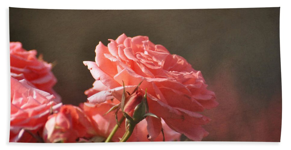 Pink Bath Sheet featuring the photograph Pink Rose by Todd Hostetter