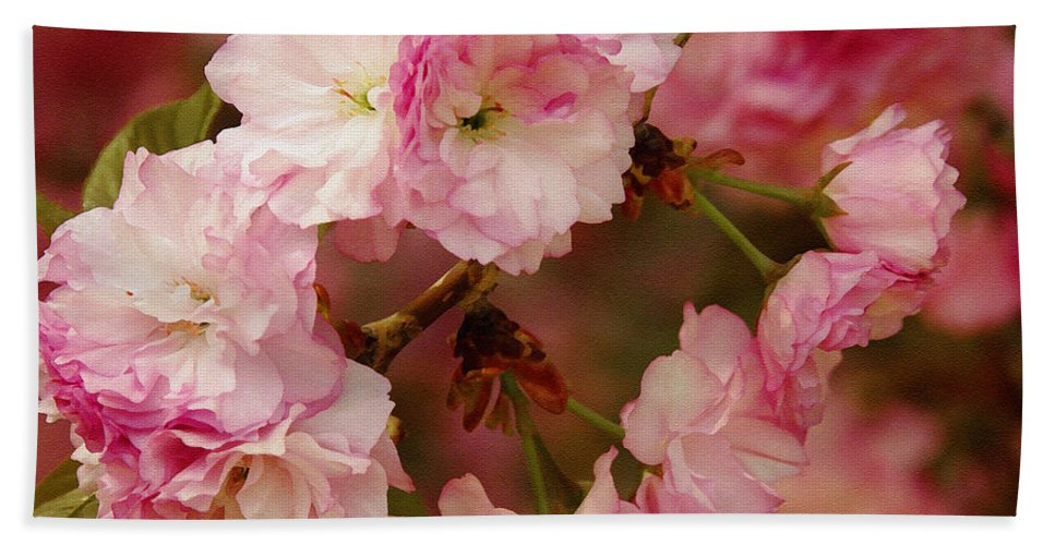Crab Apple Hand Towel featuring the photograph Pink Spring Blossoms by James C Thomas