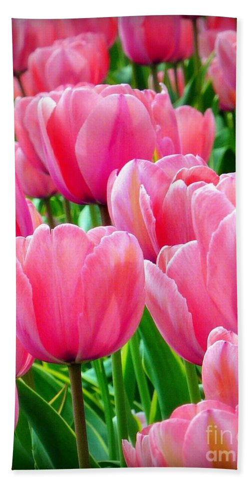 Tulips Hand Towel featuring the photograph Pinks My Color by Susan Garren