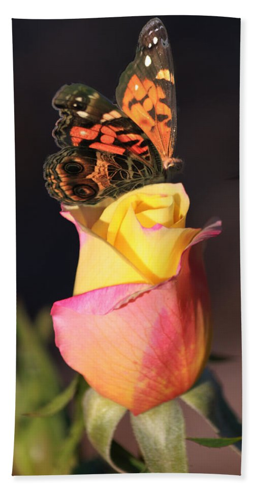 Butterfly Bath Sheet featuring the photograph Piz535 by Steve Herndon