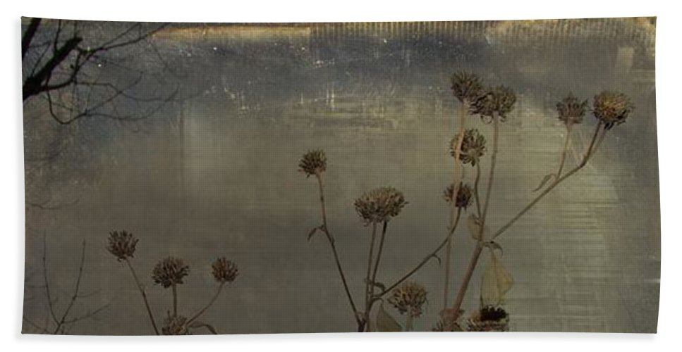 Aged Plant Photograph Bath Sheet featuring the digital art Urban Grunge Nature by Gothicrow Images
