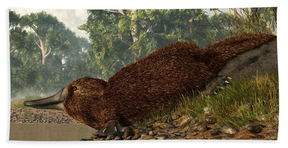 Platypus Hand Towel featuring the digital art Platypus On The Shore by Daniel Eskridge