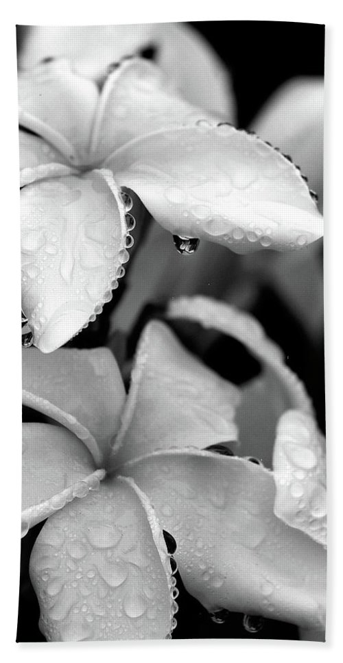 Black & White Bath Sheet featuring the photograph Plumeria Drip by Peter Tellone
