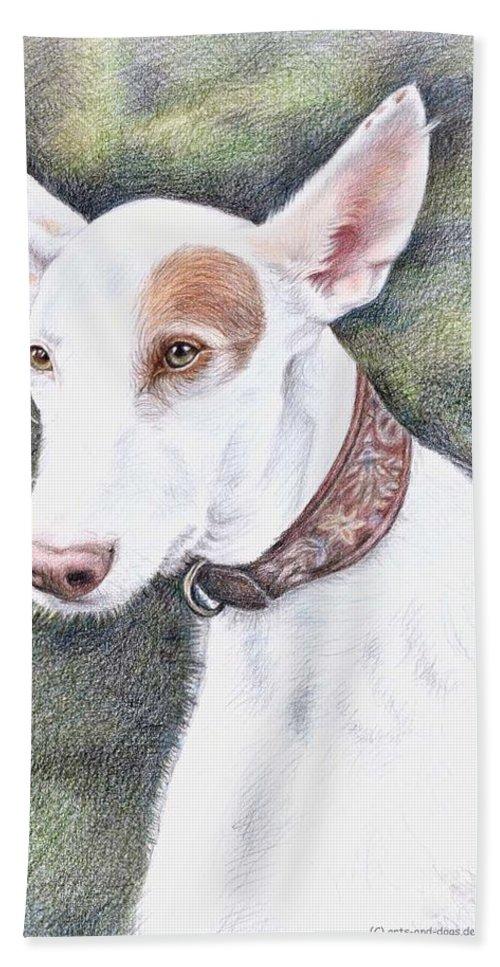 Dog Bath Towel featuring the drawing Podenco Ibicenco by Nicole Zeug