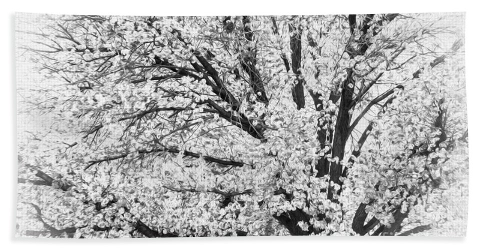 Trees Hand Towel featuring the photograph Poetry Tree by Roselynne Broussard