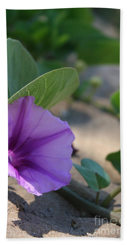 Aloha Hand Towel featuring the photograph Pohuehue - Pua Nani O Kamaole Hawaii - Beach Morning Glory by Sharon Mau