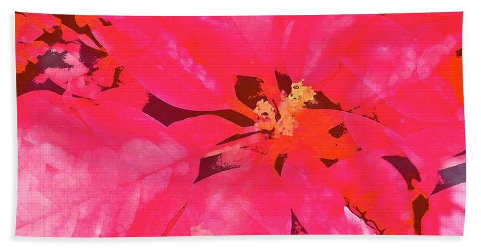 Christmas Hand Towel featuring the photograph Poinsettia 1 by Pamela Cooper