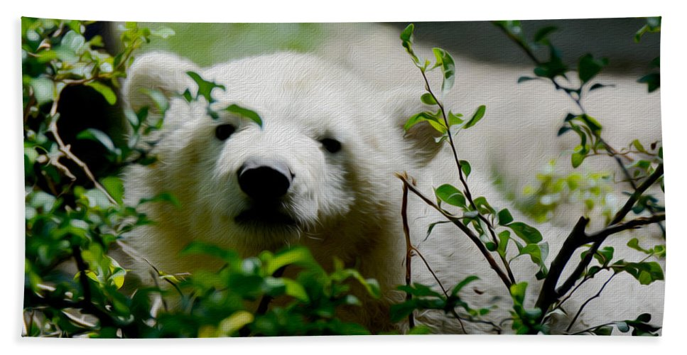 Polar Bear Cub Hand Towel featuring the photograph Polar Bear Cub by Tracy Winter