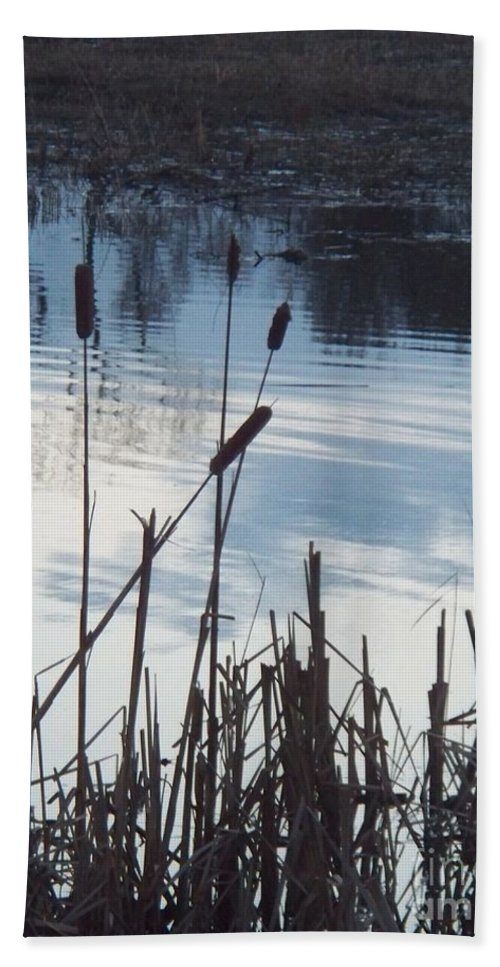 Landscape Bath Sheet featuring the photograph Pond At Twilight by Eric Schiabor