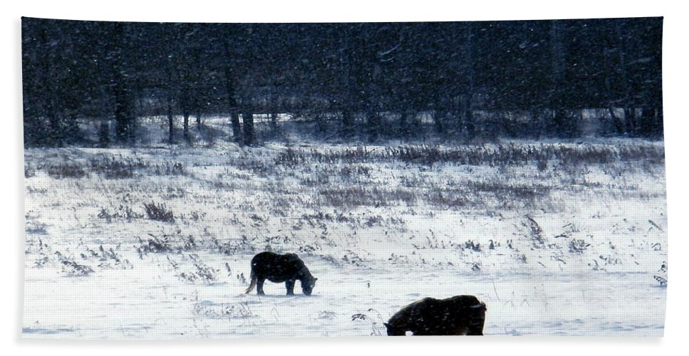 New York Hand Towel featuring the photograph Ponies In The Snow by Christian Mattison