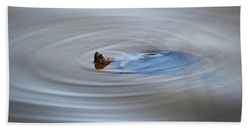 Turtle Hand Towel featuring the photograph Pop Up by Linda Kerkau