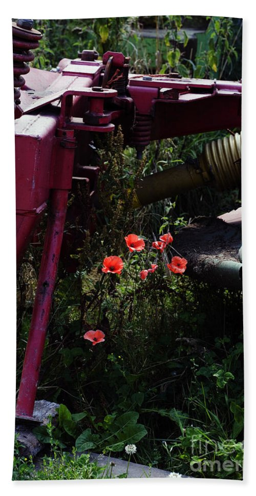 Poppy Papaver Rhoeas Poppies England English Farm Farming Bath Sheet featuring the photograph Poppies Growing Amongst Farm Machinery In A Farmyard Near Pocklington Yorkshire Wolds East Yorkshire by Michael Walters